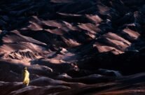 Walking the volcanic ash